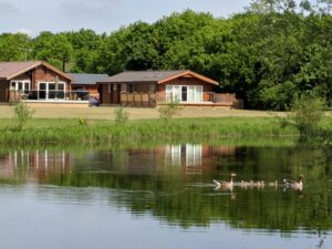 Log Cabins overlooking Frisby Lakes with geese