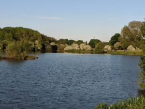 Photo of Frisby Lakes