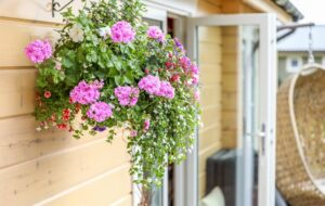 Hanging basket outside log cabin
